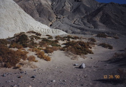 death valley 2000 012