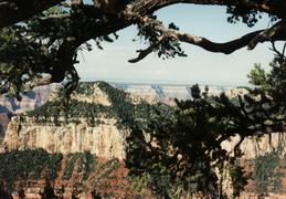 grand canyon w mom n jerry 028