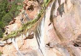 Grand_Staircase_Trip_2003_Zion_Natl_Park_Panoramas