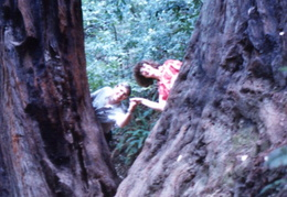 diane and peter muir woods 1988 01