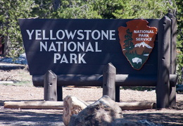 yellowstone national park may 2014 0001