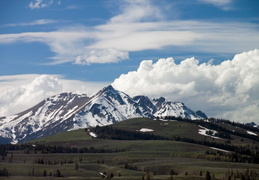 yellowstone national park may 2014 0012