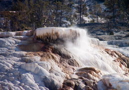 yellowstone national park may 2014 0018