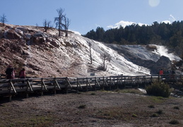 yellowstone national park may 2014 0021