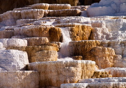 yellowstone national park may 2014 0029