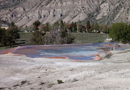 yellowstone national park may 2014 0040