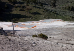 yellowstone national park may 2014 0041