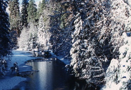 yosemite frozen merced river