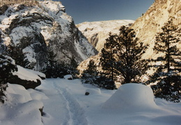 yosemite trail in snow