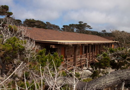 asilomar july 2010 032