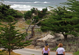 asilomar july 2010 035