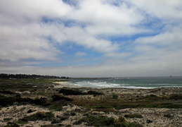 asilomar july 2010 046