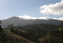 Mt_Diablo_Jan_2008