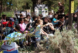 wildcat canyon wildlife show 002
