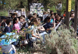 wildcat canyon wildlife show 003
