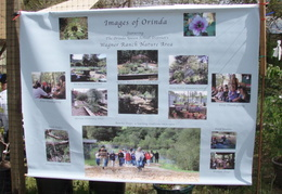 wildcat canyon wildlife show 043