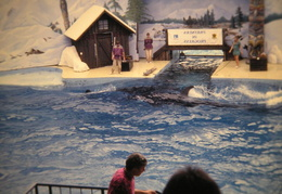 marine world 2003 029