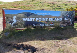 Antarctica_Cruise_20181224_West_Point Island_Falklands
